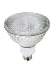 Floodlight CFL