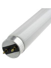 T8 Linear Fluorescent