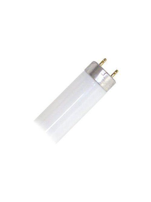 Sylvania 21427 32 W 83 CRI 3000 K 2900 lm Medium Bi-Pin Base T8 Fluorescent Lamp