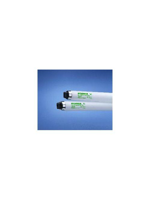 Sylvania 22205 86 W 78 CRI 4100 K 8000 lm T8 Fluorescent Lamp