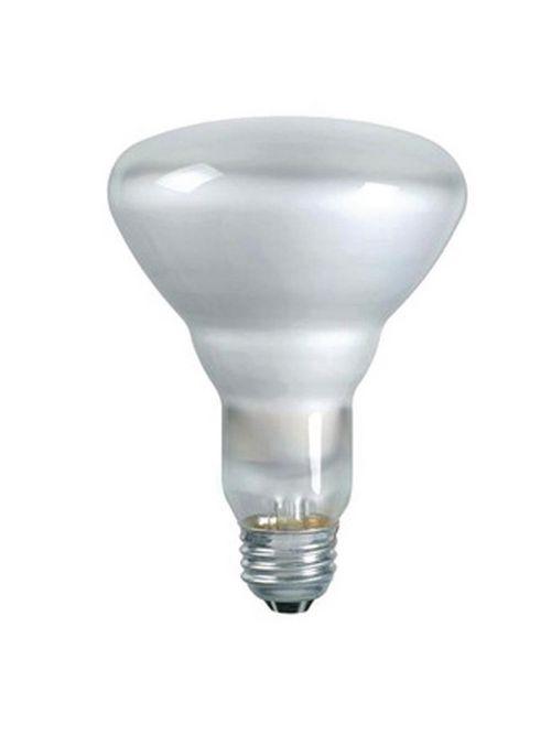 Shat-R-Shield 01222 65 W 130 Volt 100 CRI 2680 K 605 Lumen Medium Base BR30 PFA Coated Incandescent Lamp