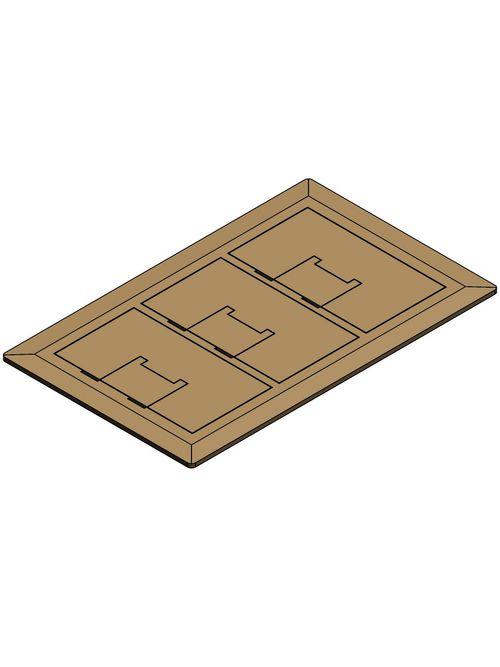 Carlon E9763BR 3-Gang Floor Box Cover, Brass