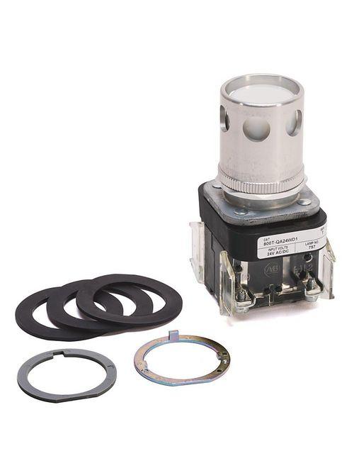 Allen-Bradley 800T-QA24WD1 30 mm Push Button
