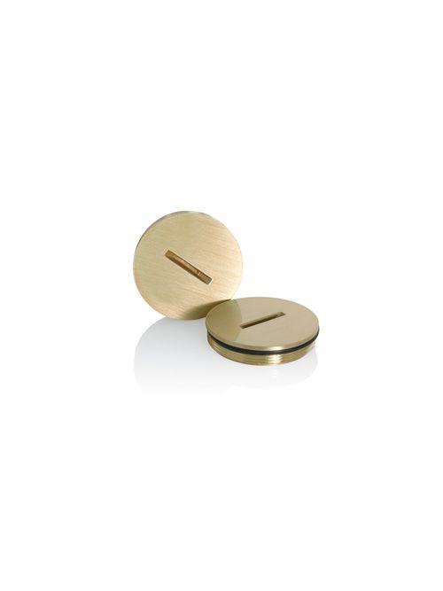 LEV 25249-CAP REPL CAP W/O RING