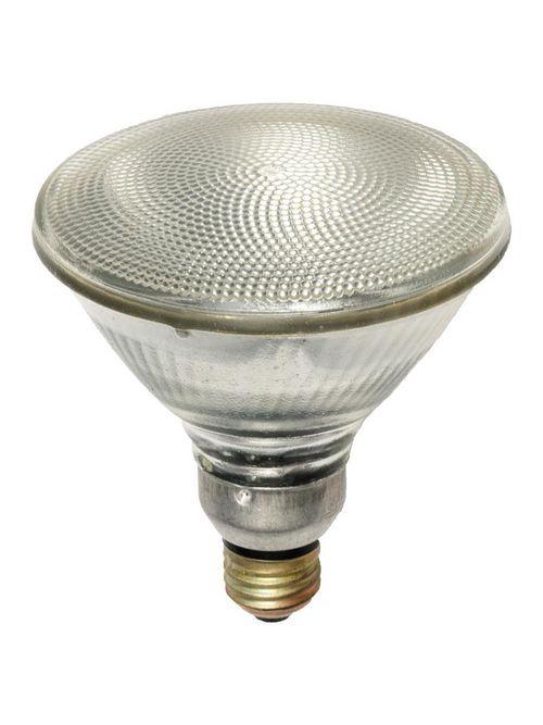 Shat-R-Shield 01589S 5.3 Inch 70 W 120 Volt 100 CRI 2875 K 1305 Lumen Medium Base PAR38 Silicone Coated Halogen Lamp