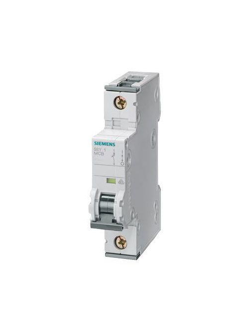 Siemens Industry 5SY6101-7 1-Pole 1 Amp 230/400 VAC 6 kA Curve C Supplementary Protector