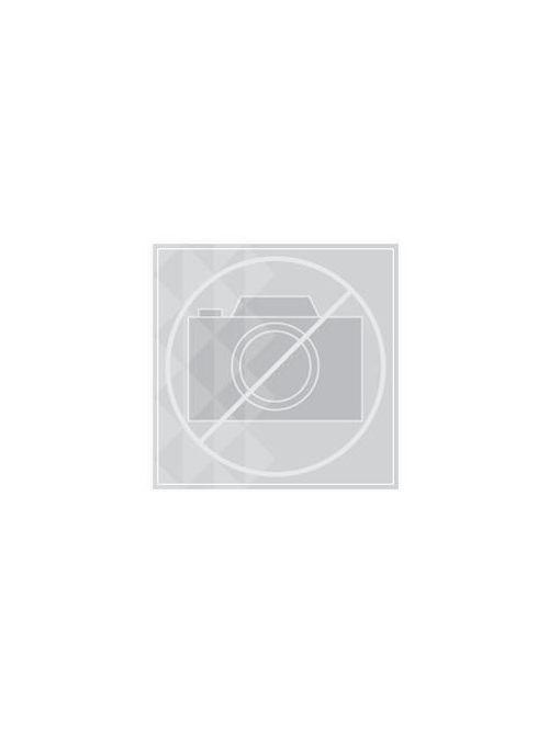 Hoffman CWH3136LG Light Gray Enclosure Hinged Window Kit