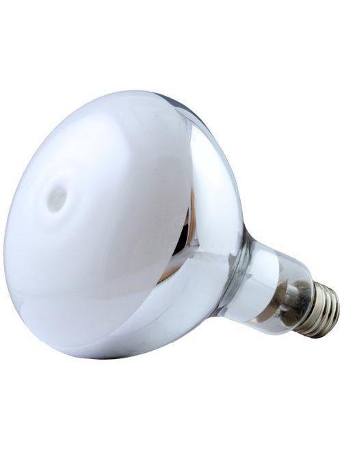 Sylvania 69405 H38BP-100/DX Lamp