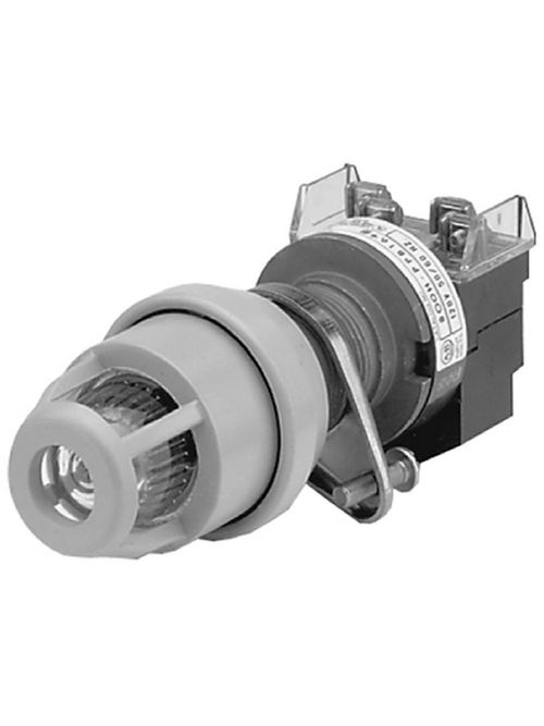 Allen-Bradley 800H-QPB10M Type 7&9 Hazardous Location Push Button