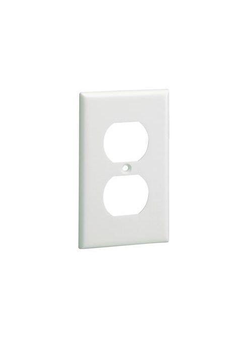 Panduit CP106IW Single-Gang 106 Duplex Screw-On Faceplate