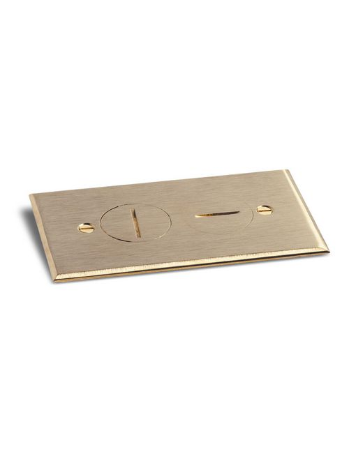 LEW RRP-2-BR REPLACEMENT PLATE RRP-