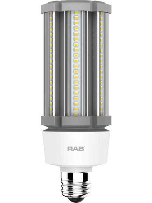 RAB HID-27-E26-830-BYP-PT HID PST T