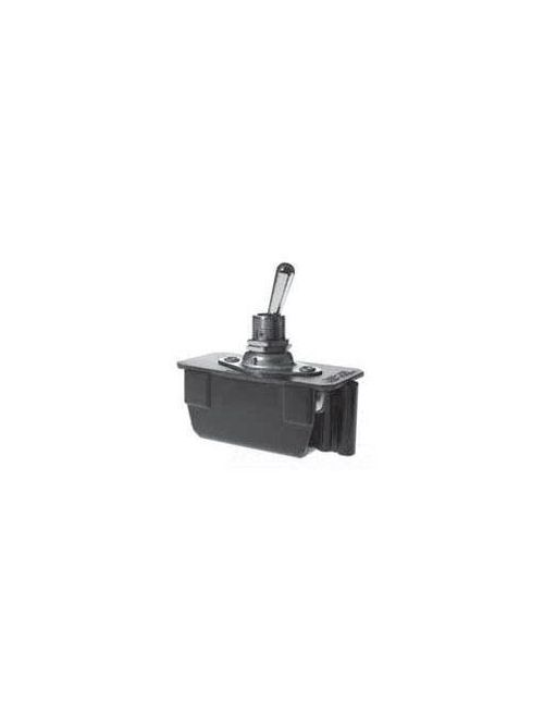 Selecta Products SS627-BG 250 VAC 20 Amp 2-Pole Maintained Toggle Switch